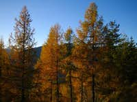 Autumn impression on the...