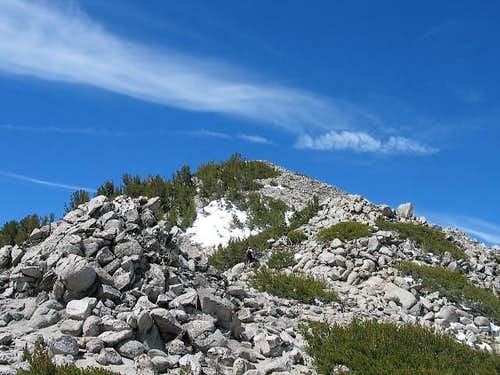 The summit from the northeast...