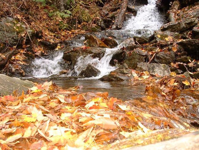 Money Brook Trail Water Fall