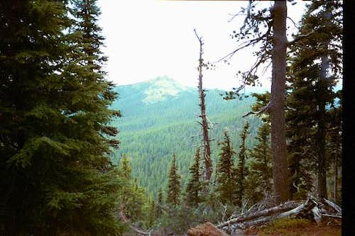 Sawtooth Mountain from the...