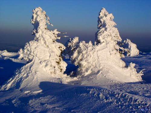 winter on vladeasa