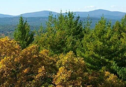 Federal Hill : Climbing, Hiking & Mountaineering : SummitPost