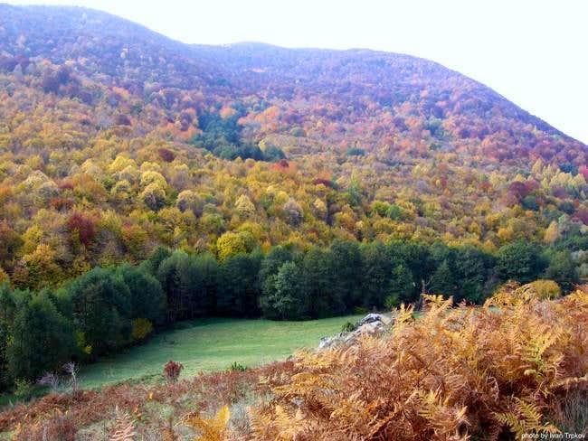 Autumn in the Zlokukjani...