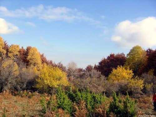 Autumn on Neolica massif