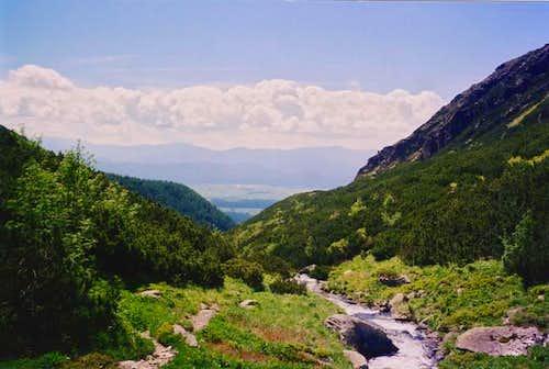 The Bystrá dolina in July,...