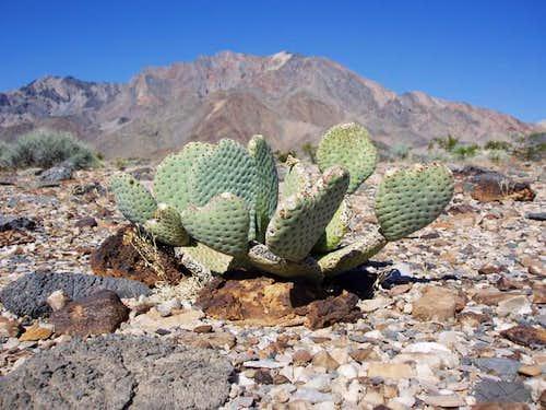 Pyramid Peak (Death Valley)