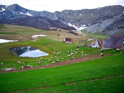 Gradina summer huts (above...