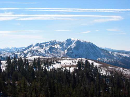 Close up of M. Peak as seen...