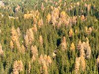 Autumn spectacular, 13-11-2005