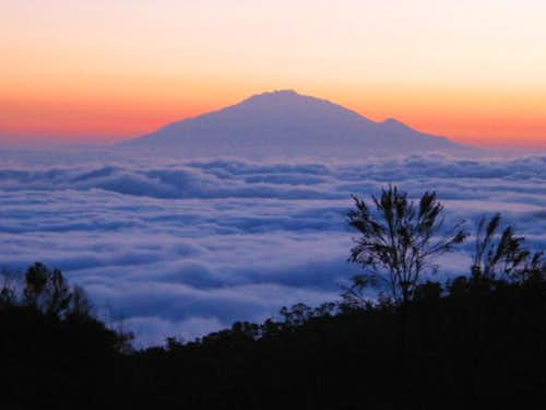Sunset on Mt. Kilimanjaro -...