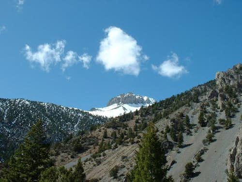 View of Mt. McCaleb from the...