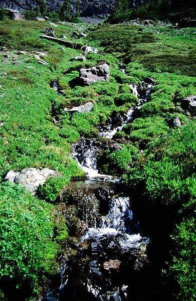 The stream out of the upper...