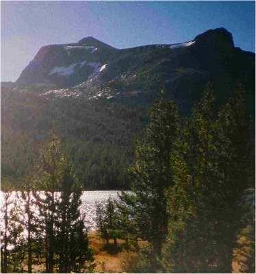 SAGA of MOUNT DANA AUTUMNA