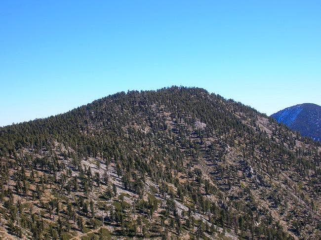 Anderson Peak as seen from E....