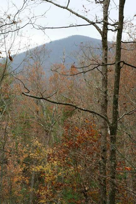 Coosa Bald, 4280 ft, from the...