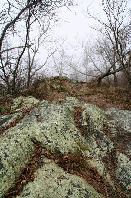 Summit of Coosa Bald. This is...