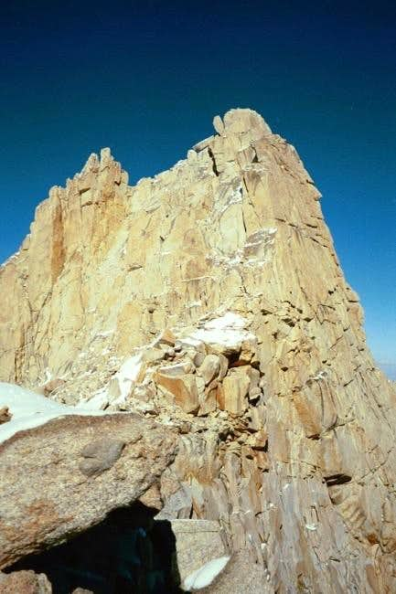 The summit of Mount Muir from...