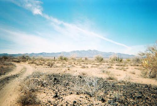A view of distant Pinacate...