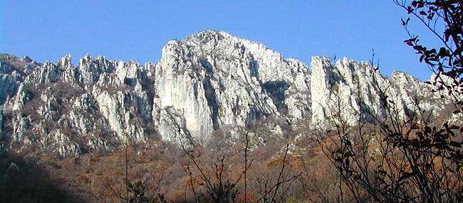 the cock ridge on Moregallo