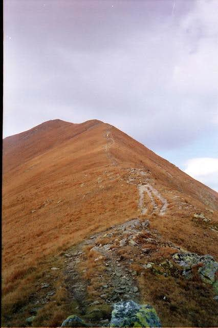 Bystra summit seen from the...