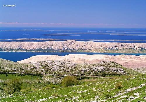 Pag from Velebit