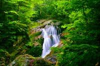 Ruisseau des Pruches,...
