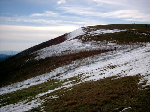 The summit of Max Patch from...