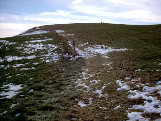 Heading up Max Patch on the AT.