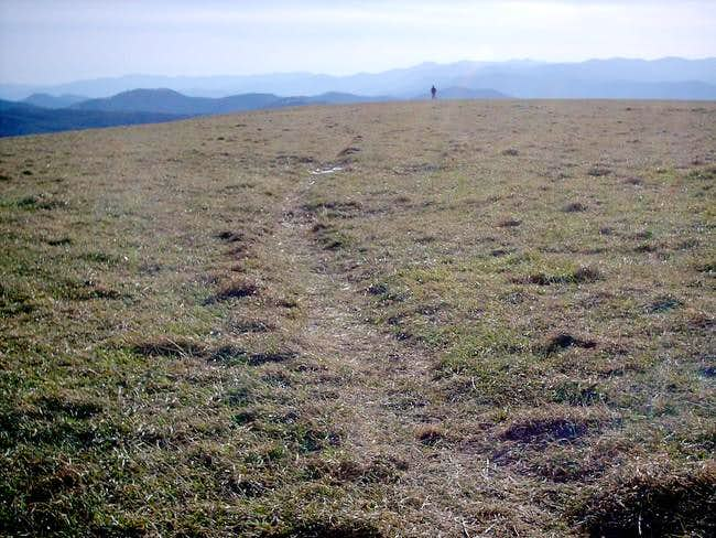 The broad summit lawn of Max...