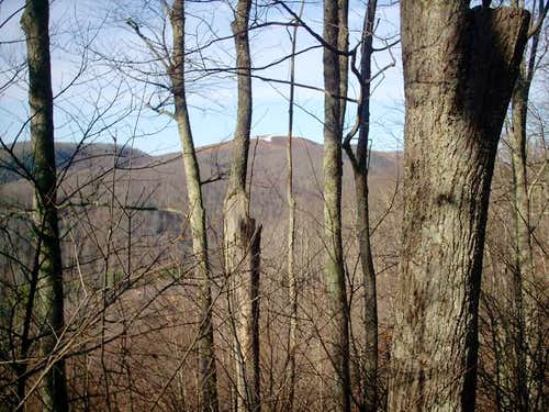 Max Patch through the trees...