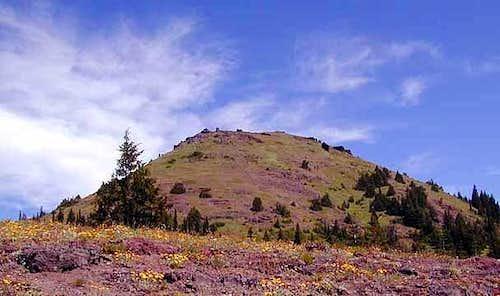 Cone Peak from the Cone Peak...
