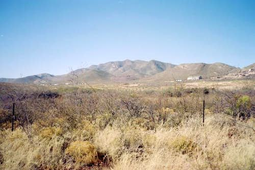 A view of the Mule Mountains...
