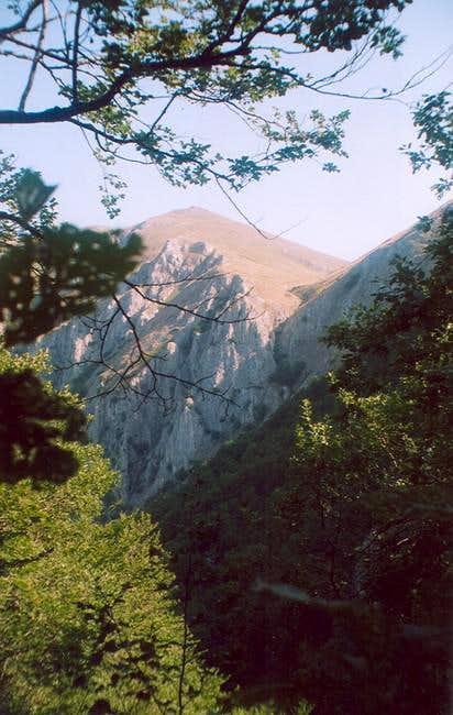 Brzovec peak on Bistra mountain