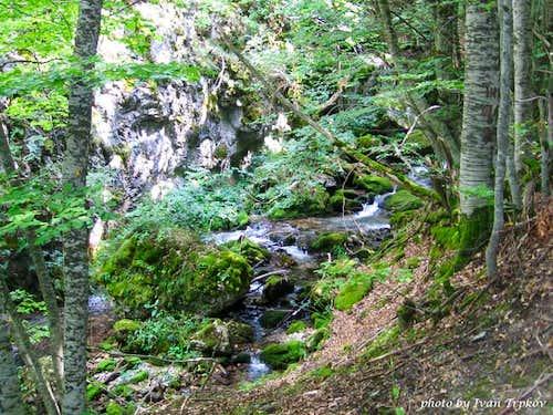 Tresonechka river on Bistra...