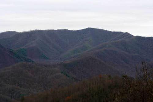 Cheoah Bald, 5062 feet, from...