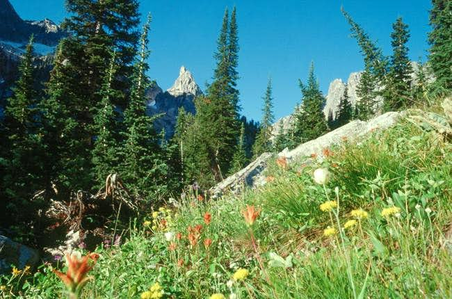 Warbonnet Peak from the...