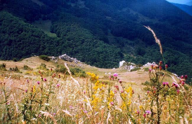 Area around the Srka peak