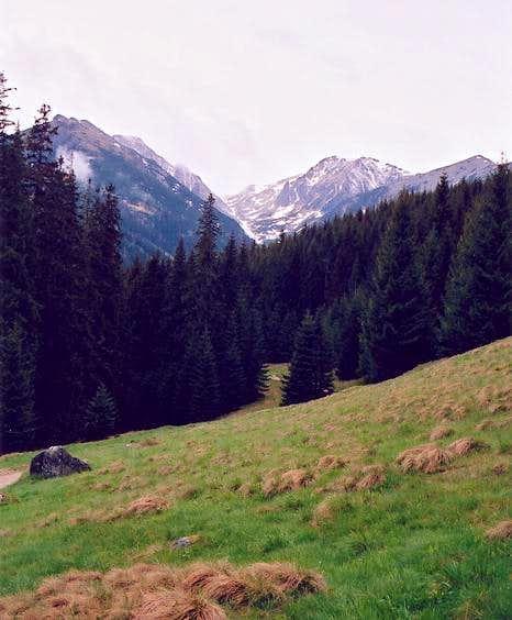 Waksmundzka Valley seen from...