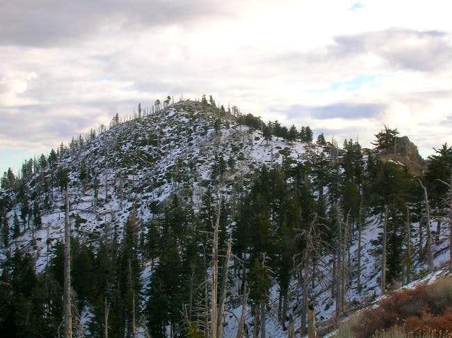 Bighorn Peak seen from...