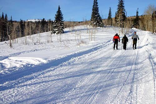 Groomed trail from Daniel\'s...