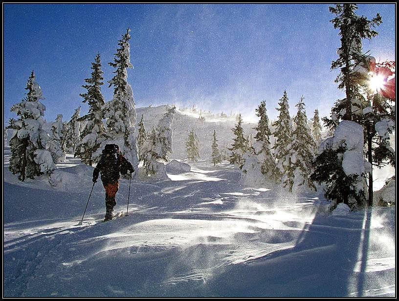 A winter scene from Plesivec