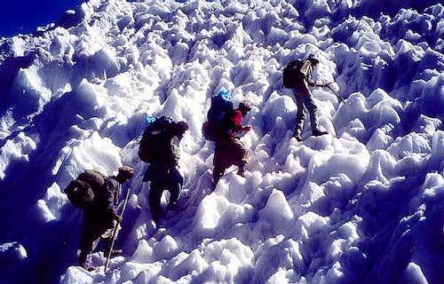 Ice fields of Noshaq