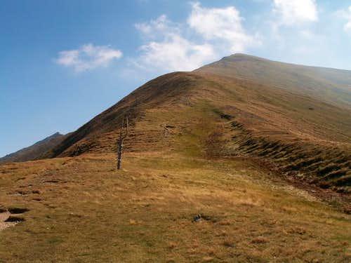 Kamenistá dolina-Bystrá