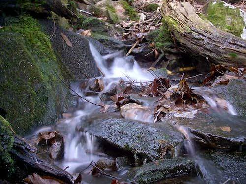 The Art Loeb Trail between...