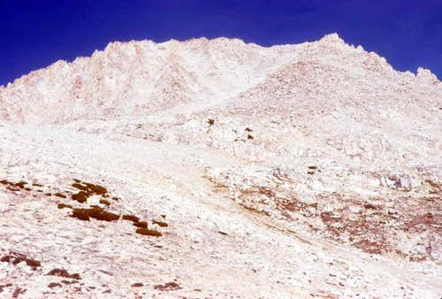 Mt. Hilgard viewed from...
