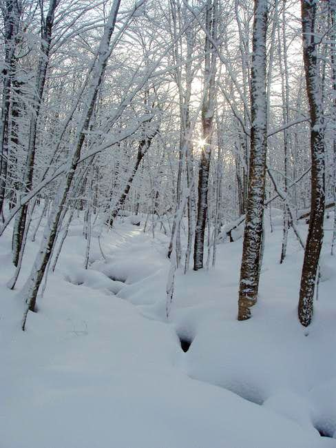 U.S. State Highpoints Mountains & Rocks : SummitPost