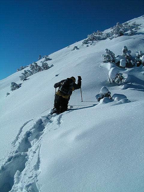 Deep snow on Notkarspitze