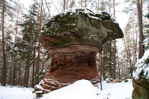 Hexenpilz (Witches' Mushroom)...