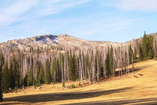 Granite Mountain, Idaho