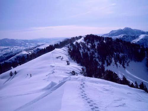 A nice hike up the ridge...